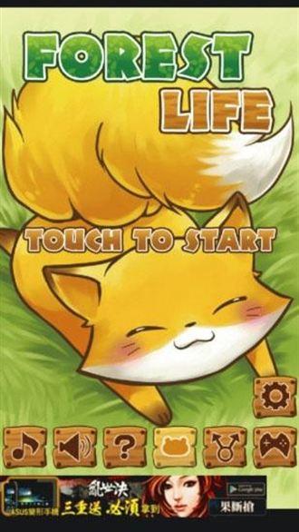 來養超萌小狐狸吧~「Forest Life樂活森林」
