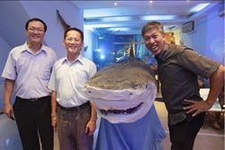 大白鯊標本 一窺海洋奇幻旅程