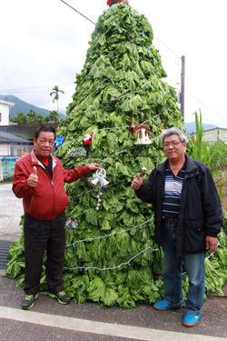 掛菜變裝聖誕樹 花蓮大和社區亮相