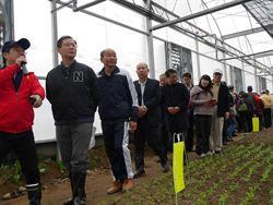 福蓮綜合農場 首家全自動化溫室