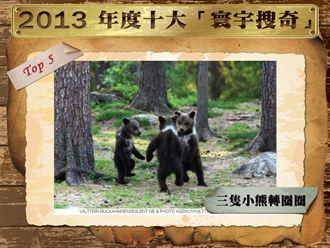 2013年度十大新聞-【寰宇搜奇】篇
