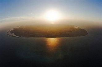 阿聯保育區 放養瀕危劍羚