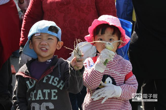 5歲大的高姓雙胞胎兄妹,在蘿蔔田中拔出貌似男女的龍鳳蘿蔔,十分吸睛。(楊漢聲攝)