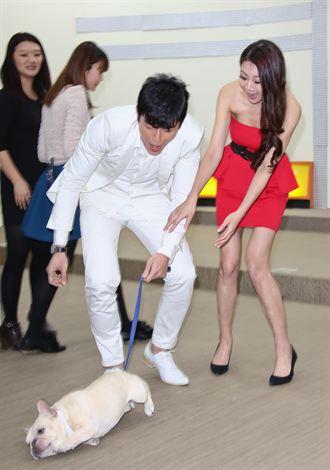 《神仙老師狗》首映會 可愛法鬥登場
