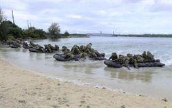 日公布奪島作戰部隊及作戰計畫