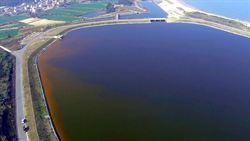 金門水庫變紅褐色 葡萄藻作怪