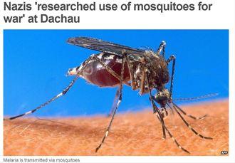 德納粹生物武器「蚊子軍團」播瘧疾