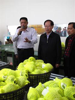 廣西:兩岸應共推東協農業市場