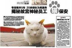「貓保安」坐鎮 北京故宮無鼠患