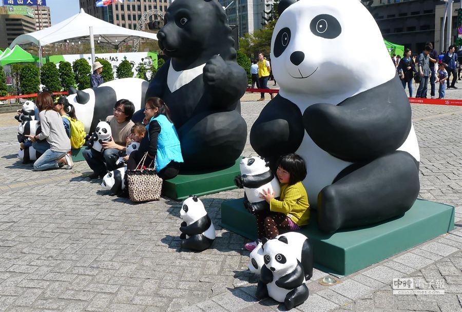 紙貓熊今天起在市府廣場開跑,體驗拍照區人氣夯。(江慧珺攝)