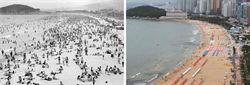 南韓砸重金 搶救海雲台白沙灘
