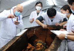 考古確定內蒙古1500年漆棺墓主人為女性