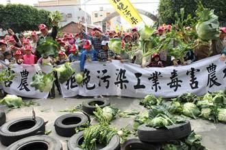 溪州水尾村 抗議為輪胎廠徵農地
