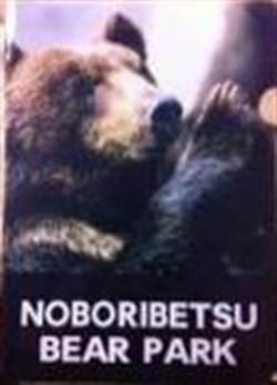 蝦夷棕熊遵「佛禮」大受泰遊客歡迎