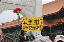 反反服貿 康乃馨對太陽花