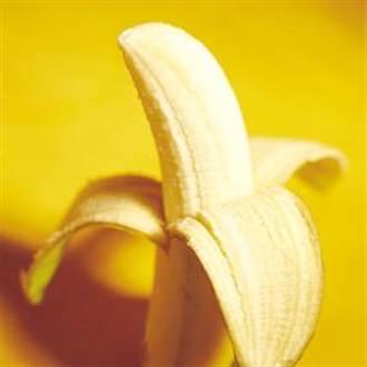 專家造香蕉「諾亞方舟」