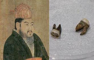 隋煬帝墓出土兩顆牙齒 釉質仍在