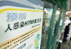 H7N9境外移入 台商病況穩定 接觸者排除感染