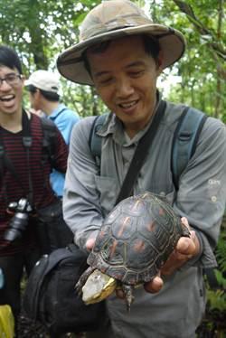 保育食蛇龜  翡管局祭「秘密武器」