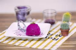 仙人掌雪酪冰 法式手法在地食材