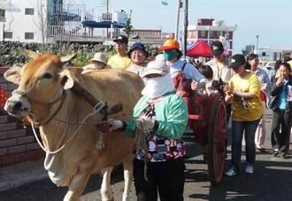 牛車之旅最正港的澎湖鄉土味 今夏澎湖旅遊懷舊風