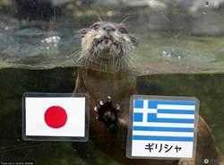 小水獺爭當「預言帝」 預測希臘贏日本!