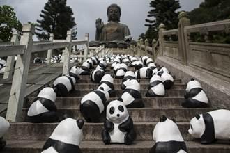 1600只紙糊熊貓巡遊香港