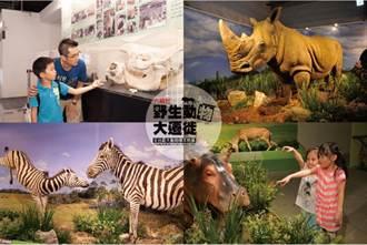 3D互動零距離 珍貴動物標本首度展出