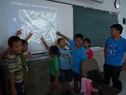 外來種亞洲錦蛙入侵 黃金蝙蝠館志工與學童展開移除