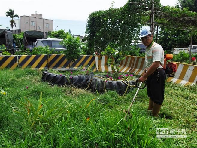 蔡東霖克服身體障礙,自許「台灣憨牛」,四處義務除草美化環境。(張朝欣攝)
