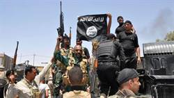 IS利用Diaspora做宣傳 無法控管