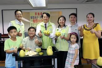 可驅蟲柚燈 環保又安全