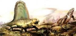 遠古哺乳動物的近親是「夜貓子」