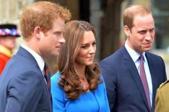 嫂嫂凱蒂王妃害喜嚴重 哈利放棄30歲派對