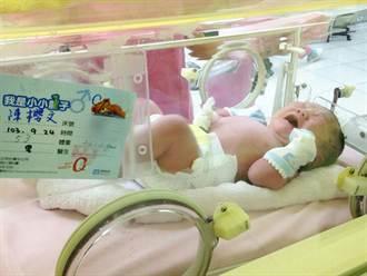 布丁姐姐生第二胎 徐小可驚呼好大隻