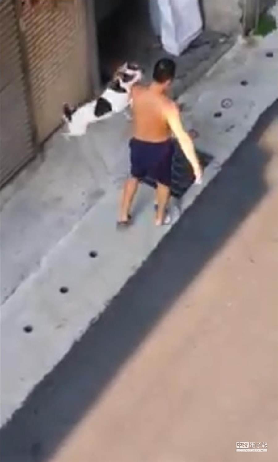 赤膊男猛力打狗後還把狗兒高高地抓起。(摘自網友紅康瑋臉書)