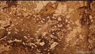 新發現:印尼岩畫源自非洲 上溯至4萬年前