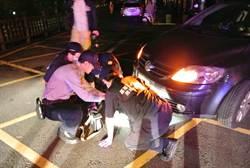離奇車禍》男駕車時速10公里 碾死過路婦人