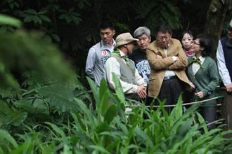 柯P參訪富陽自然生態公園