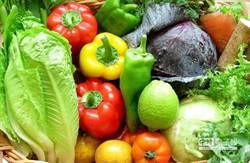 您一定不知道的「VB6」革命性飲食哲學