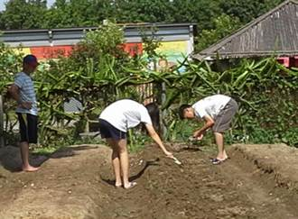 環保農園讓市民體驗農耕樂