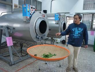 北港農工製茶設備 訓練學生一技之長