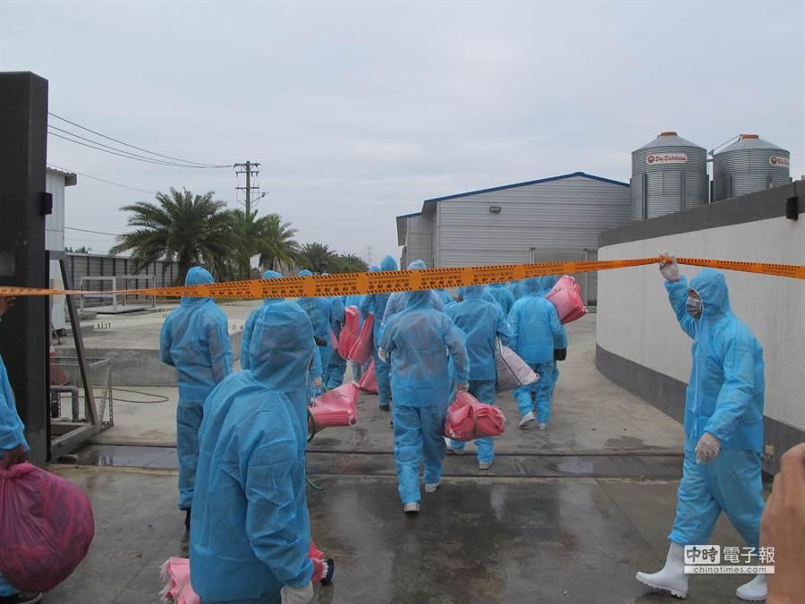 80名國軍加上防疫人員總計110餘人持續進行防疫工作。(許智鈞攝)
