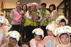彰化古月民俗館 喜氣「羊」洋過年特展