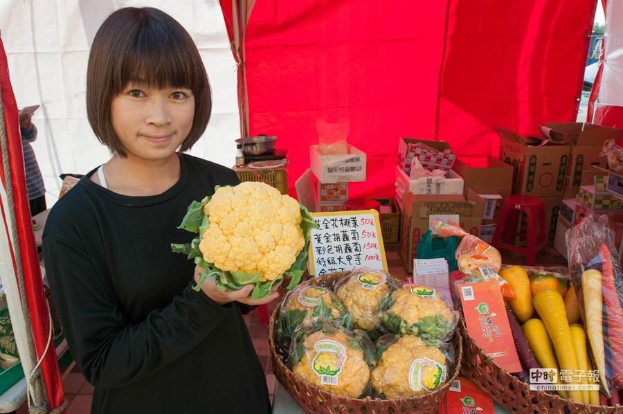 業者改良營養價值極高的黃金花椰菜。(黃仲裕攝)