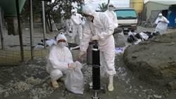 高雄第6個養禽場檢出禽流感 全場撲殺中