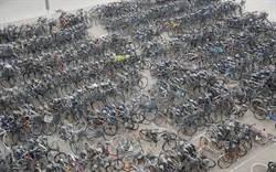 寒假到 大學驚現自行車墳場