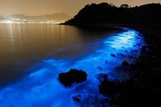 港現螢光海灘 專家稱廢水污染所致