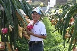百大黃金農夫:為土地鍍金,創造最動人的農業價値