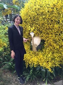 台灣國際蘭展 美女連4年雙語主持